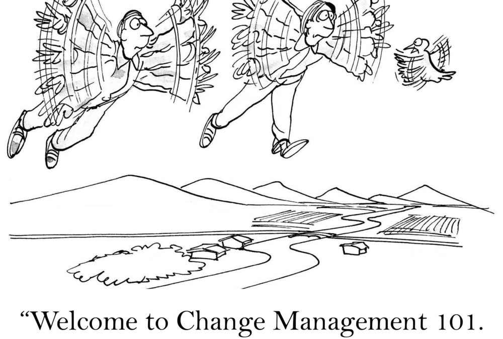 7 Reasons Good Change Management is Crucial for ERP Projects